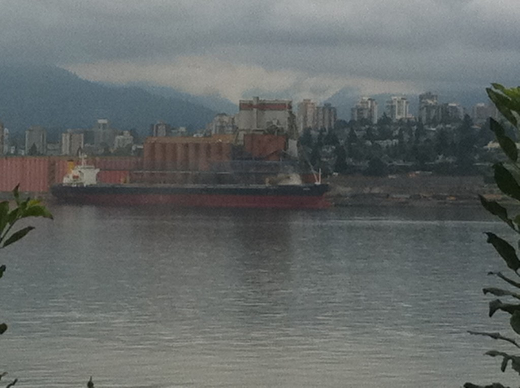 burrard inlet view
